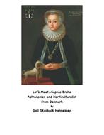 SophieBrahereading.pdf