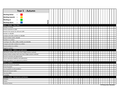 Year-5---Small-step-pupil-tracker---RAG.pdf