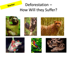 How-do-we-Manage-the-Rainforests----Ecosystems.pptx