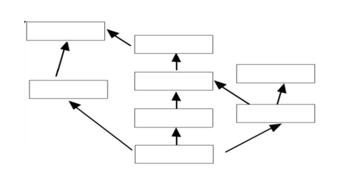 FOod-Web-Guidance-Template.pptx