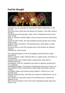 Fuel for thought Bonfire Night article KS3/4
