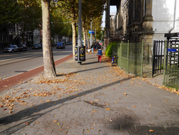 Avenue along Artis ZOO, full of trees - Fall in Amsterdam City; 19 October - c 12.00 o'clock.JPG