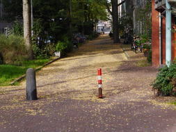Small street of fallen leaves - Autumn in Amsterdam city; mid October 9.30 o'clock, morning.JPG
