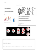 Mitosis And Meiosis Worksheet Teaching Resources