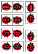 Ladybird-dominosV2.pdf