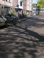 photo 'Shadows of branches on the pavement' in the Valkenburgerstraat - early May - c. 3 o'clock afternoon; Trees in Amsterdam City.JPG