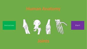 Human-Anatomy---Joints.pptx