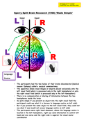 Psychology Sperry (1968) 'Split Brain' Research: