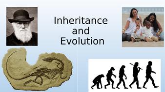 Inheritance-and-Evolution-lesson-1.pptx