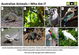 Australian-Animals-Picture-Card.pdf