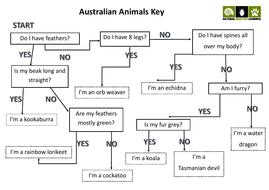 Australian-Animals-Key.pdf
