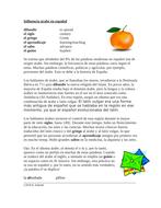 Arabic Influence on Spanish Reading + Worksheet: Influencia árabe en español