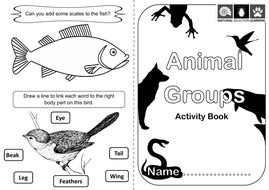 Animal Classification PowerPoint and Activities KS1