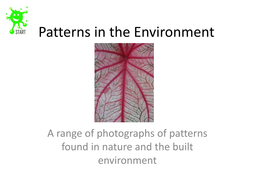 Patterns-in-the-Environment.pdf