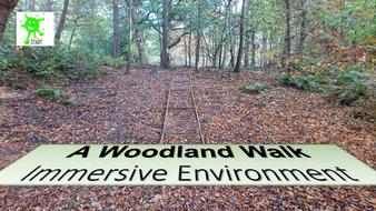 A-Woodland-Walk-Immersive-Environment.pdf