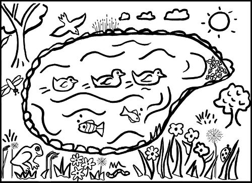 Pond Colouring Sheet