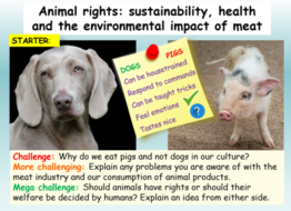animal-rights-lesson.png