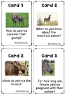 Activity-and-Task-Cards-Zebras.pdf