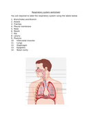 Label-the-respiratory-system.docx