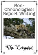 Leopards-Non-Chronological-Report.pdf
