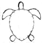Lesson-9---sea-turtle-outline.jpg