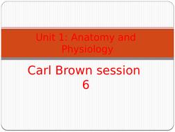 session-6.pptx