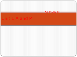 session-10.pptx