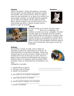 Mis mascotas Lectura: Spanish Reading on Pets: Dog, Cats and Parrot