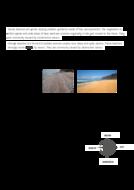 beaches--sand-dunes--spits--bars.pdf
