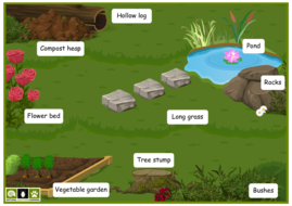 NSL-A3-garden-scene-with-labels.pdf