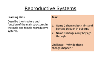 KS3-Reproductive-Systems.pptx
