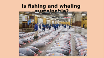 Is-fishing-and-whaling-sustainable.pptx