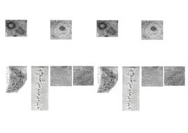 EM-Pictures.docx