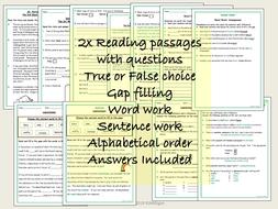Reading-Comprehension-PREVIEWSLIDEUK.pdf