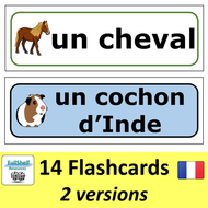 French-Pets-Presentation-Preview3-TES..PNG