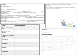 2.2.4-Transport-in-plants.pdf