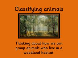 Classifying-animals1.pdf