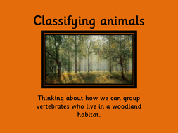 Classifying-animals2.pdf