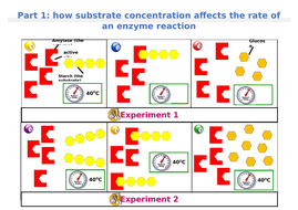 1.-Substrate-concentration-storyboard.docx