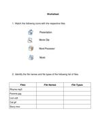 File formats worksheet