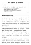 Environment-model-essay-.docx