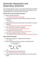 4.-Anaerobic-Respiration-and-RQs-MS.docx