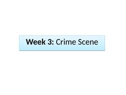 Detective-Fiction-week-3.pptx