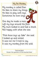 Reading-comprehension-Pet-Monkey-SEN.pdf