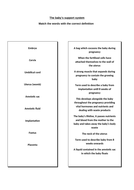 matching-activity-sheet.doc