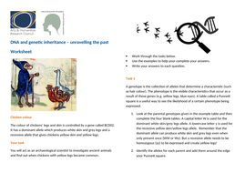 DNA-and-Genetic-inheritance-Worksheet.docx