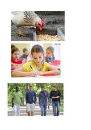 1--Pics-for-hen--pen--men--ten.docx