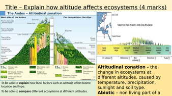 Local-factors-and-biomes.pptx