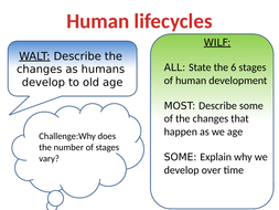 Lesson-1-human-lifecycles-pp.pptx