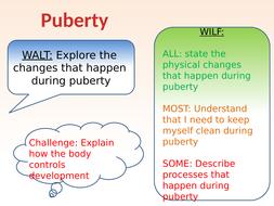 Lesson-7-puberty.pptx